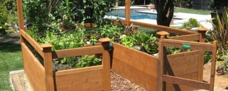 Build a kitchen garden with a construction drawing for Creating a kitchen garden